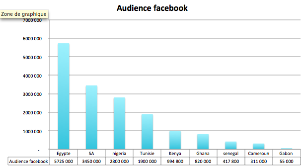 audience des pays africains sur facebook en avril 2011